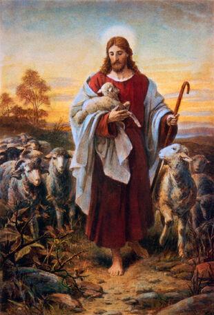 Christshepherd