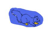 Mila squirrel