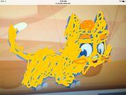 Ollma cat