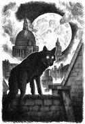 Codex Werewolves
