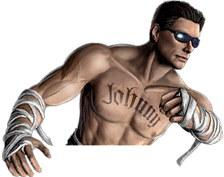 Johnny cage ladder