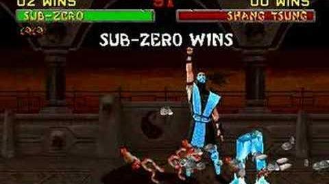 Mortal Kombat II Sub Zero Fatality 1