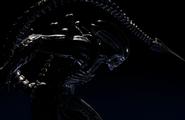 Alien (MKX)