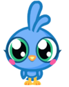 Chirpy 1