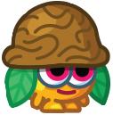 Nutmeg-HQ