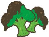 Chocolate Coated Broccoli