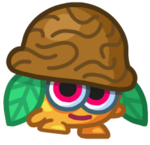 Nutmeg5