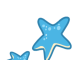 Stick-On Starfish