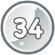 Level 34 icon