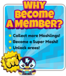Membership-widget-46efd4867e732c394790cd2fc7edd557