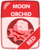 Red Moon Orchid