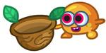 Nutmeg10