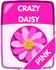 Pink Crazy Daisy