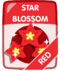 Red Star Blossom