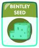 Bentley Seed