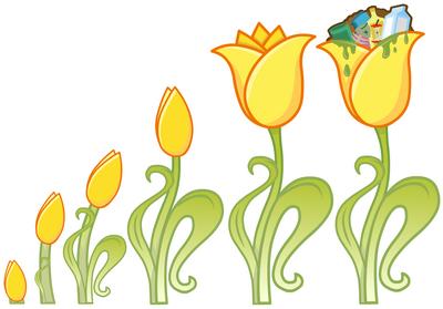 Trashy Tulip growth