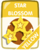 Yellow Star Blossom