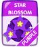 Purple Star Blossom