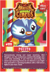 Collector card magnificent moshi circus pocito
