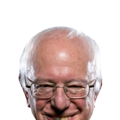 AFTER HILLARY'S EMBARASSING LOSS, the Bernie head I put in my