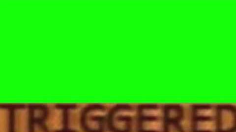 TRIGGERED GREEN SCREEN