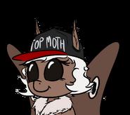 TOP MOTH