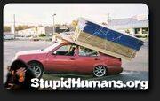 Logo - Stupid Humans