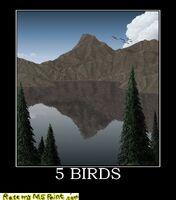 http://www.ratemymspaint.com/5-birds-mspaint--759
