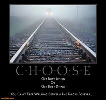 http://www.motifake.com/choose-busy-living-dying-forever-tracks-demotivational-posters-148049