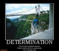 http://www.motifake.com/determination-determination-demotivational-demotivational-posters-131521