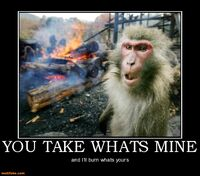 http://www.motifake.com/you-take-whats-monkey-wants-spring-back-demotivational-posters-143043
