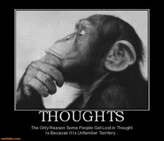 http://www.motifake.com/thoughts-thought-lost-unfamiliar-territory-demotivational-posters-146227