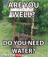 http://www.wherethepunis.com/are-you-well-d-water-well-pun-497