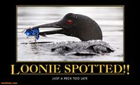 http://www.motifake.com/loonie-spotted-too-late-demotivational-posters-148882