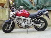 Yamaha FZ6-6490