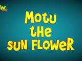 Motu The Sun Flower