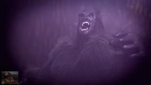 The Yahoo of Nicholas County | Mountain monsters aims Wikia