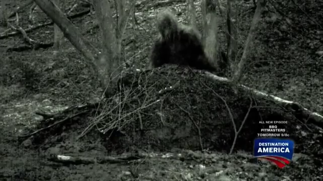 image grassman png mountain monsters aims wikia fandom powered
