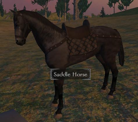 File:Saddle horse.jpg