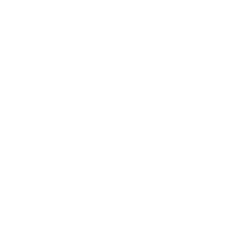 Vlandia icon
