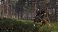 Battania cavalry