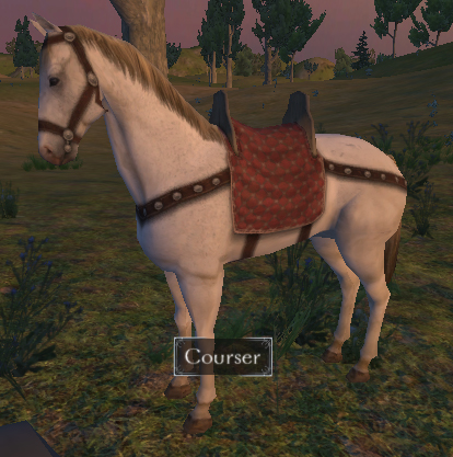 File:Courser.jpg