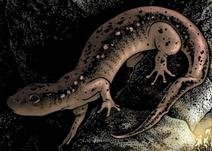 MouseGuard-Salamander