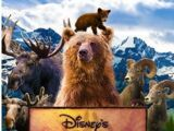 Brother Bear (Liveaction Remake)