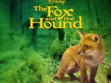 The Fox and the Hound (live-action film)