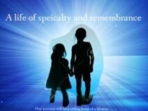 A life of specialty and remembrance teaser poster 6