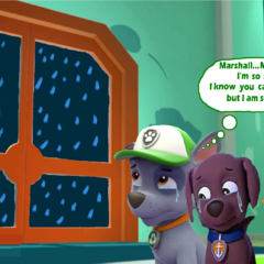 Rocky and Zuma worried sick for Marshall during a thunderstorm while Chase and Skye fight a black bear who they assume killed Marshall.