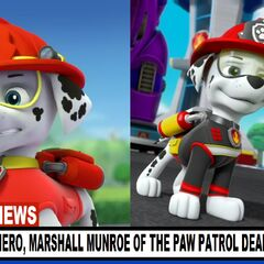 Marshall's supposed death announced on the news
