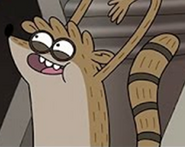 Rigby Raccoon