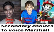 Secondary choices to voice Marshall in a PAW Patrol movie